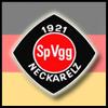 GER-SpVgg_Neckarelz